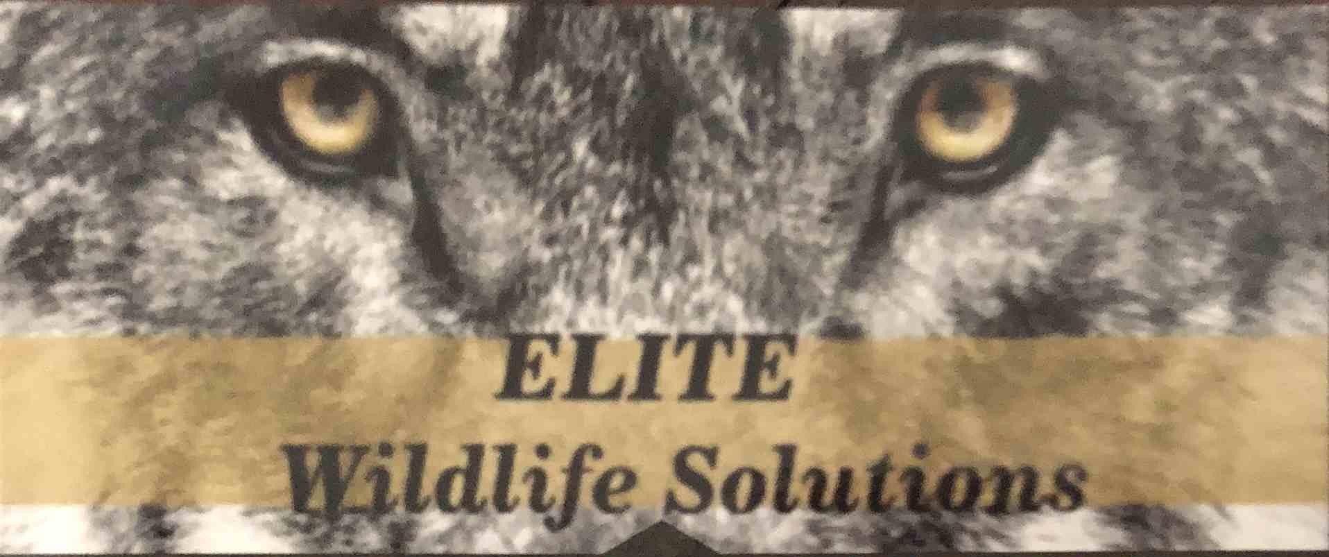 Elite Wildlife Solutions